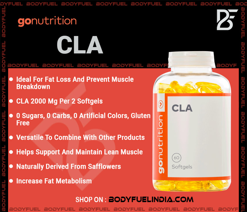 Go Nutrition CLA, Vitamins & Supplements, Body Fuel India's no.1 genuine Supplement Store