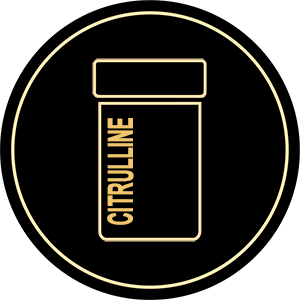 citrulline, Body Fuel India's No.1 Genuine Supplement Store.